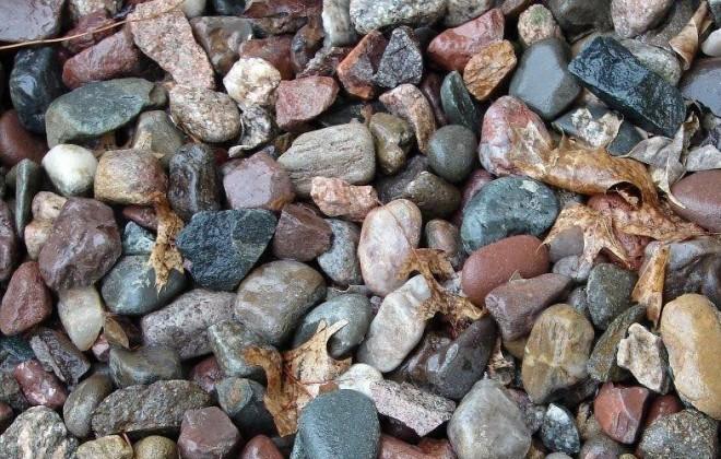 Megtalálod a békát a kövek között?